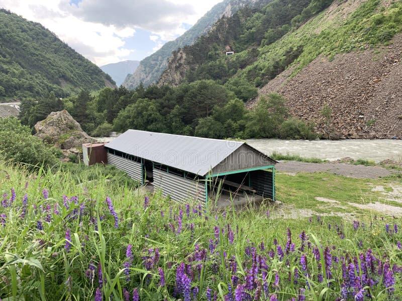 Rusland, Noord-Osseti? Recreatiegebied op de banken van de rivier Ardon in de Kassar-kloof in de zomer bij de ingang aan Nr royalty-vrije stock foto's
