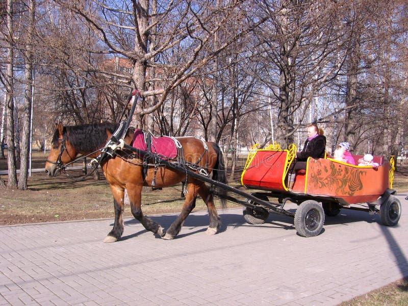 Rusland, Novosibirsk, 2 Maart, 2014: een paard draagt een het lopen kar met kinderen in de bezoekers van Parkritten in de vervoer royalty-vrije stock foto
