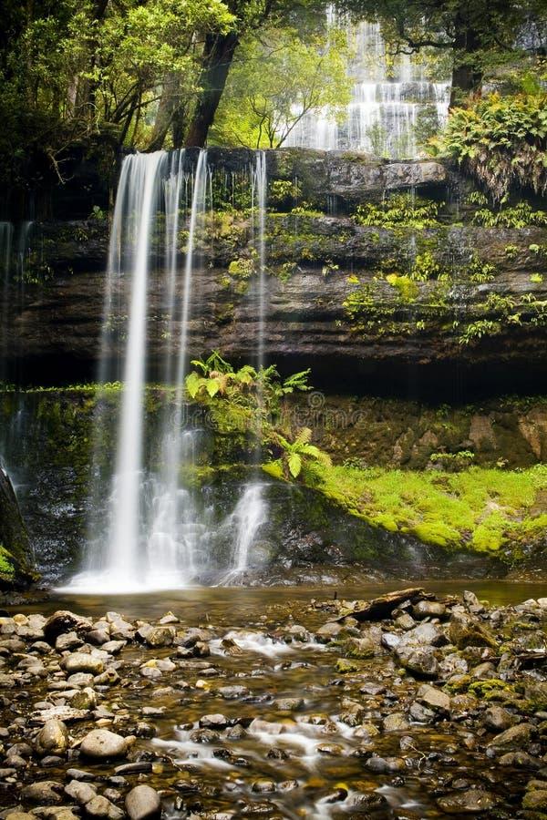 Russel Falls, Tasmania. Russel Falls waterfall in the Mt Field National Park, Tasmania, Australia stock photo