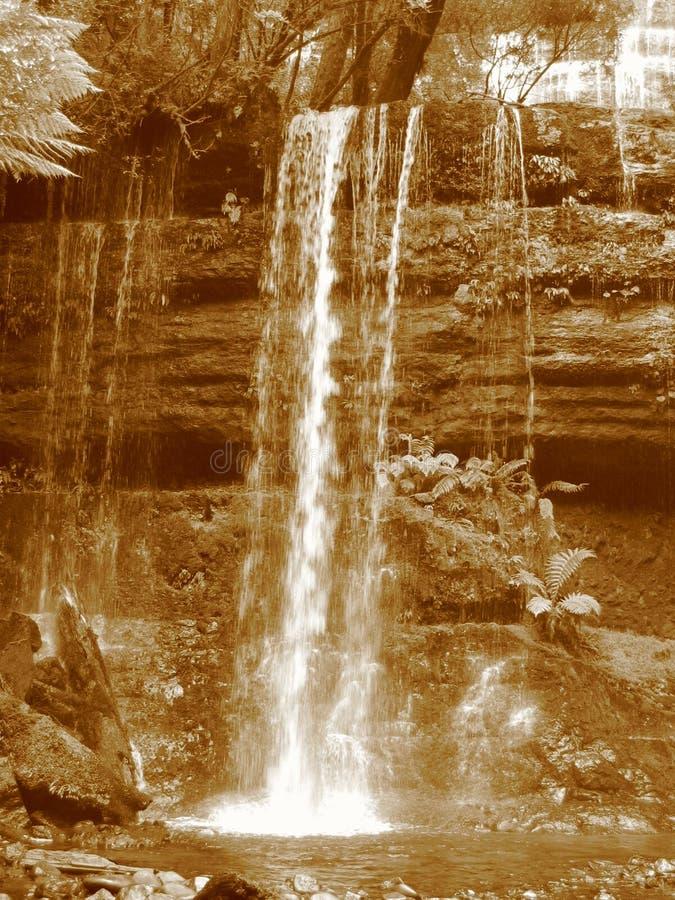 Download Russell-Fälle stockfoto. Bild von wasserfall, park, tasmanien - 253448