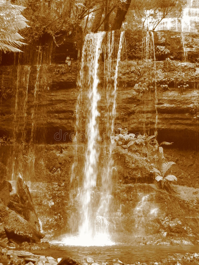 Free Russell Falls Royalty Free Stock Photos - 253448