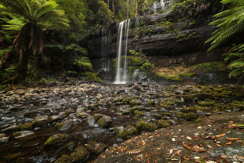 Russell Falls, Mt-Feld-Nationalpark Tasmanien lizenzfreies stockfoto