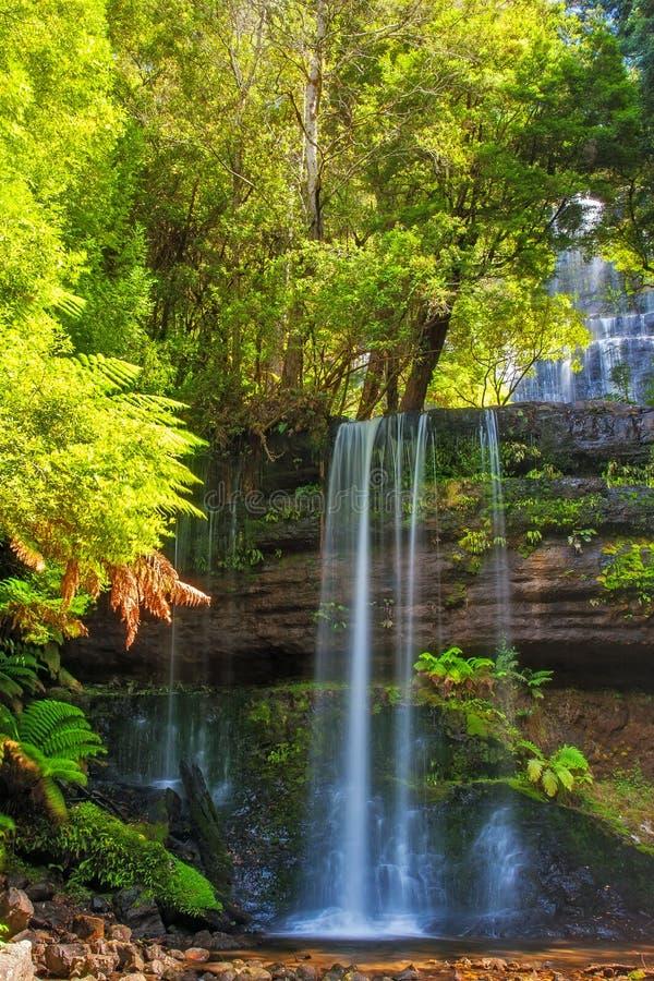 Russell Falls Tasmania Australia lizenzfreie stockfotos