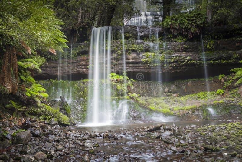 Russell Falls, zet Gebieds Nationaal park, Tasmanige, Australië op stock fotografie
