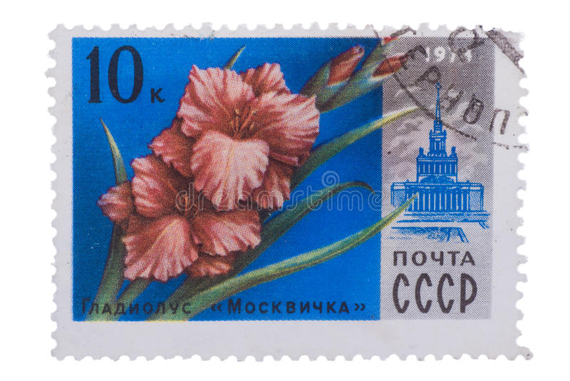 RUSSIA - CIRCA 1978: stamp printed in USSR CCCP, soviet union. Shows image of gladiolus Moscovite and VDNH building from Moscow flowers series, Scott 4652 A2192 stock photo