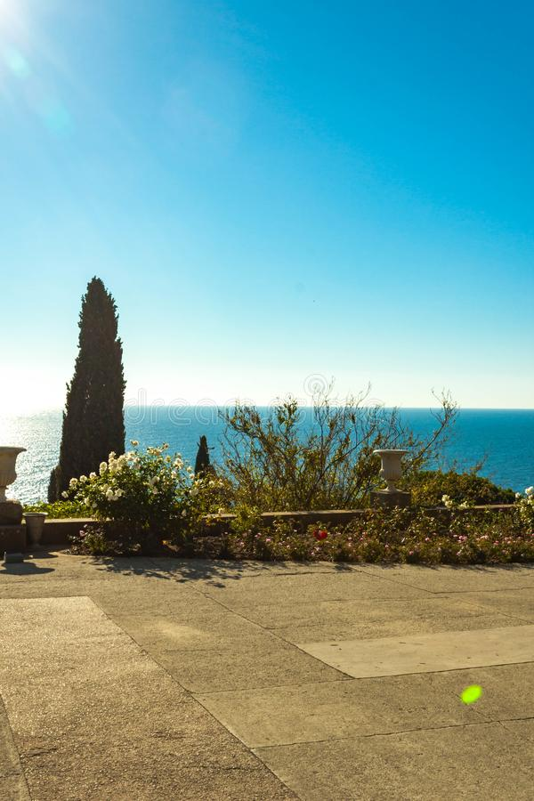 Russia, Crimea, Alupka 03 November 2018: Roses and cypress on the terraces South side of the Vorontsov Palace. Russia, Crimea, Alupka 03 November 2018: Roses and royalty free stock photos