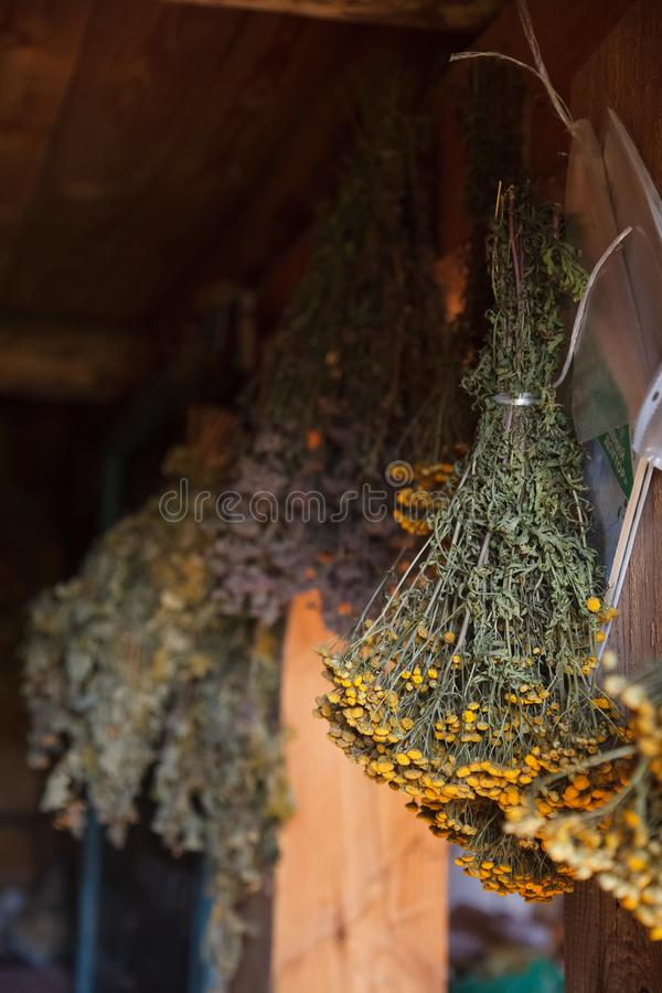 Russia, Kazan, 20 july 2017. Musium of Kayum Nasyry. vintage rustic house interior RussianDifferent types of dried herbs and flowe. Different types medical of royalty free stock photos