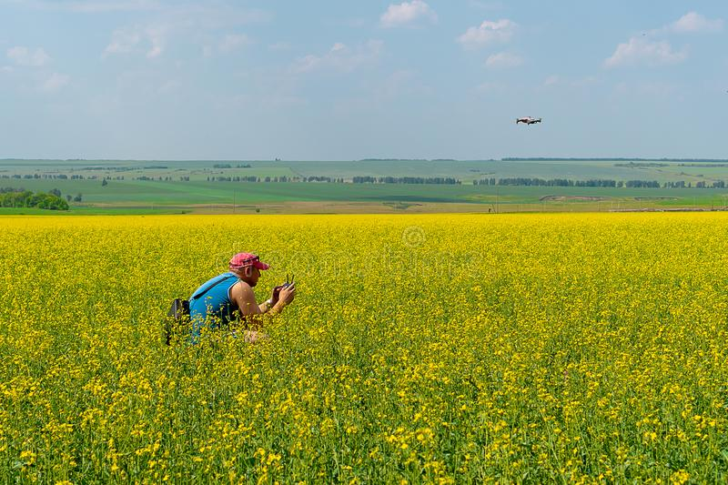 A young man in a red cap and blue t-shirt launches a drone on a yellow field of flowers on a sunny day royalty free stock photography
