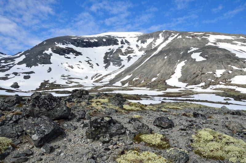 Russia, Kola Peninsula, Khibiny mountains in summer. Russia, Kola Peninsul. Khibiny mountains in summer stock photos