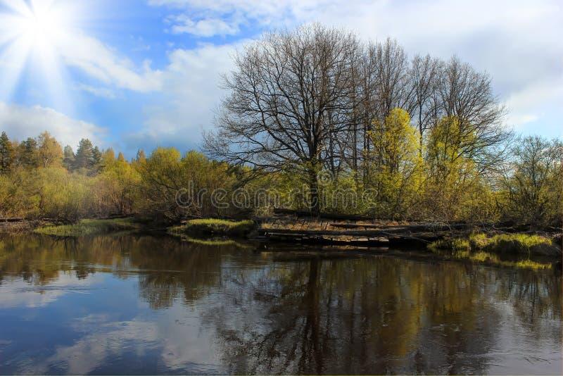 russia krajobrazowa wiosna zdjęcie royalty free