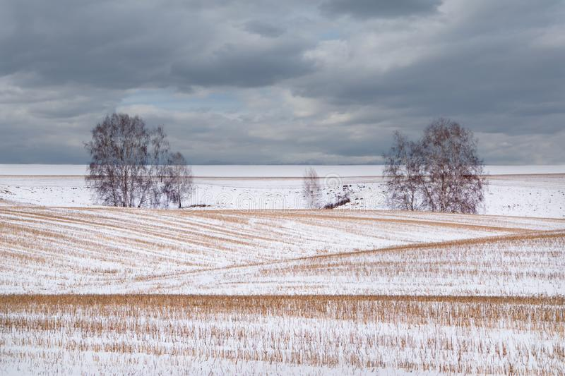 Late snow in early spring. Russia. The last snow-dusted farm field on the hills of Kuzbass stock photography