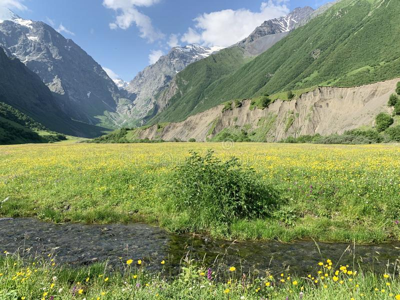 Russia, North Ossetia. Midagrabindon river in summer.  royalty free stock photography