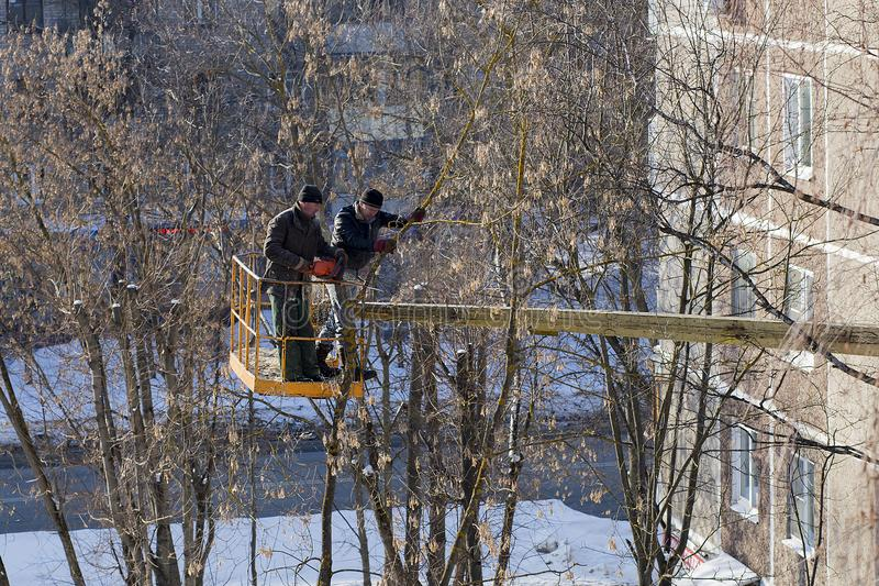 Slept branches in the yards, cleaning of the city, editoria. Russia, St. Petersburg March 17, 2018, slept branches in the yards, cleaning of the city, editorial royalty free stock images