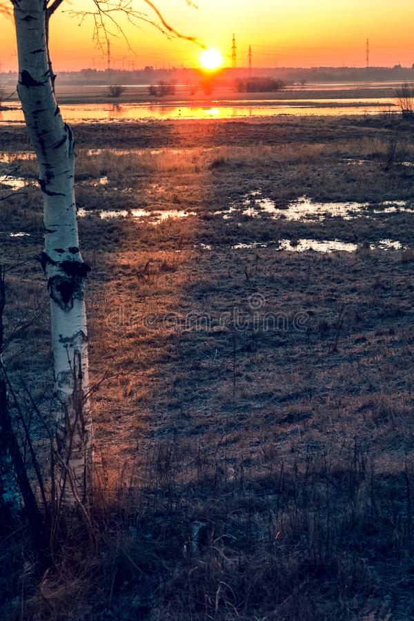 Sunrise over the channel. Russia Western Siberia dawn over the canal in May, birches in the foreground royalty free stock image