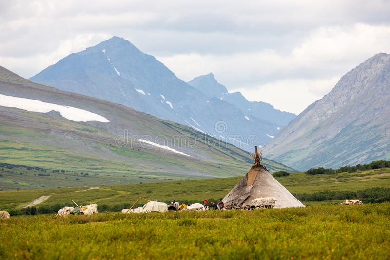 Khanty reindeer breeders camp i stock photo