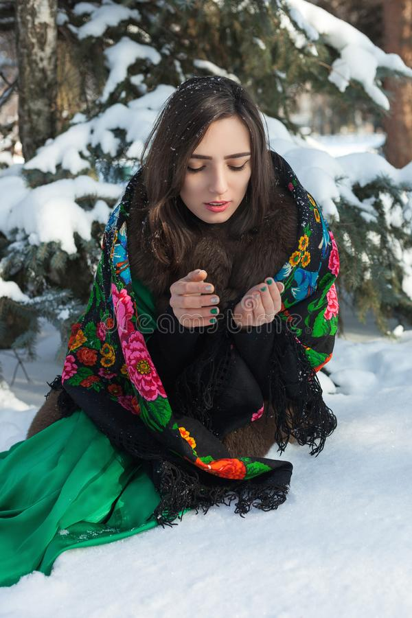 Russian beauty froze in the winter forest. royalty free stock photography