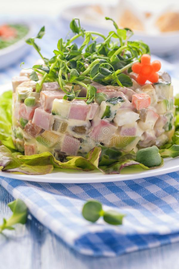 Russian bright salad royalty free stock photos