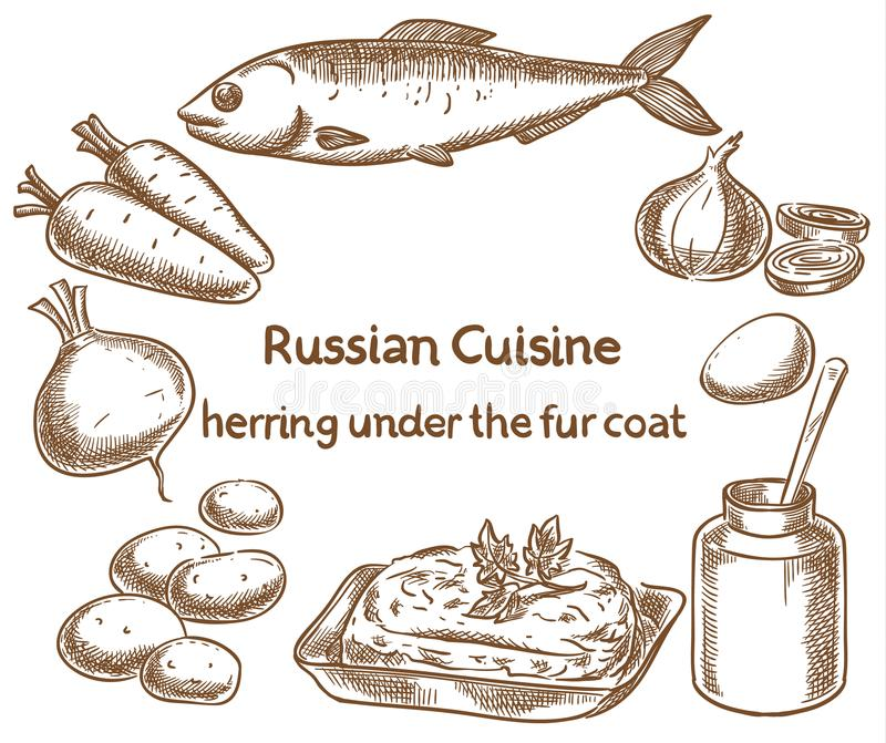 Russian cuisine. Herring under a fur coat, ingredients, vector s. Ketch drawing vector illustration