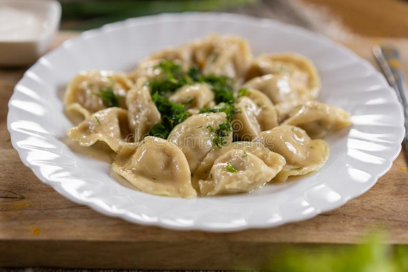 Russian National food. Close up view of traditional belorussian meal. Dumplings in white plate with green and sour. Food concept stock photo