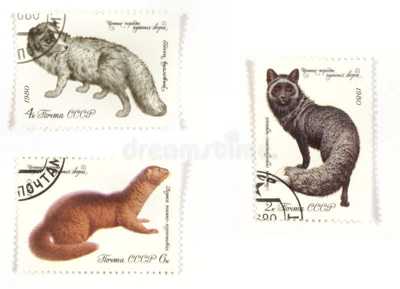 Russian post stamps wildlife. Collectible stamps from Soviet Union. Set with wild animals stock images