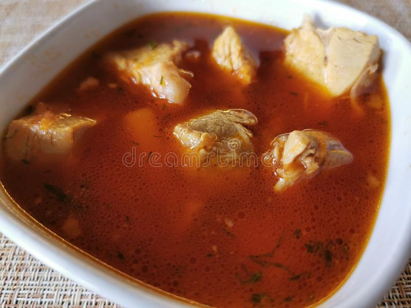 Russian soup borsch with meat in a plate. Close-up. Photography royalty free illustration