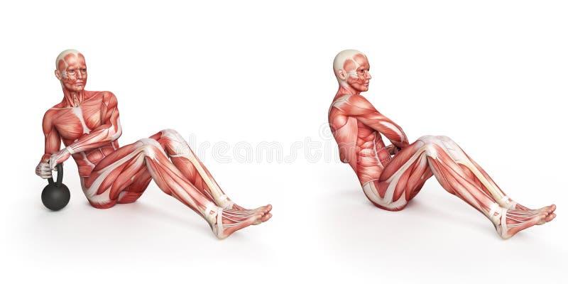 Russian Twist Stock Illustration Illustration Of Biology