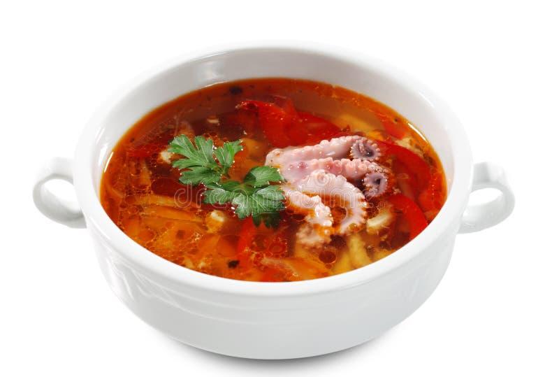 Russian and Ukrainian Cuisine - Fish Solyanka royalty free stock photography
