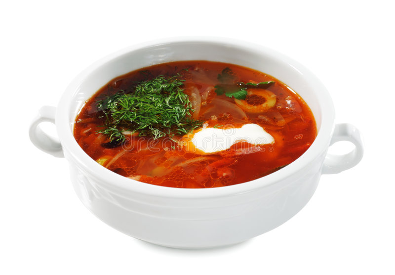 Russian and Ukrainian Cuisine - Soup Solyanka royalty free stock photo