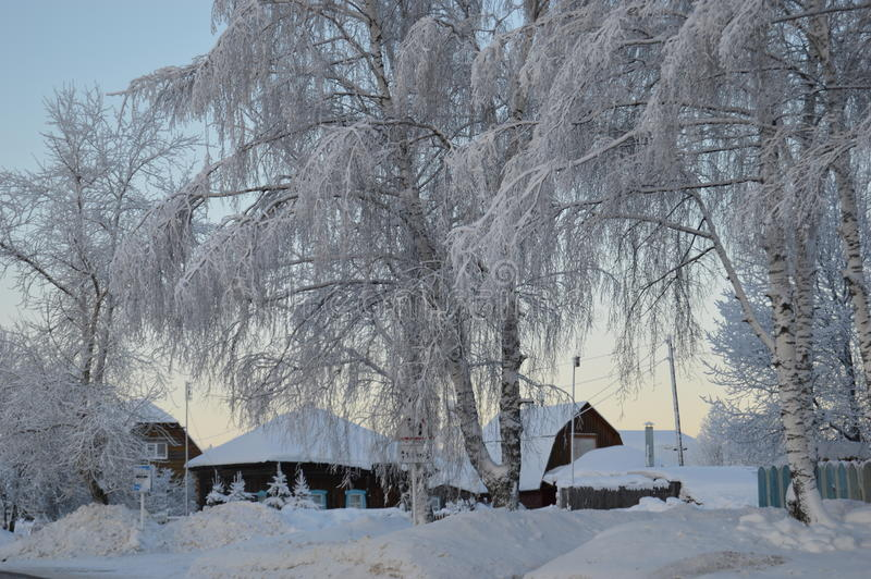 Russian village in the winter royalty free stock image