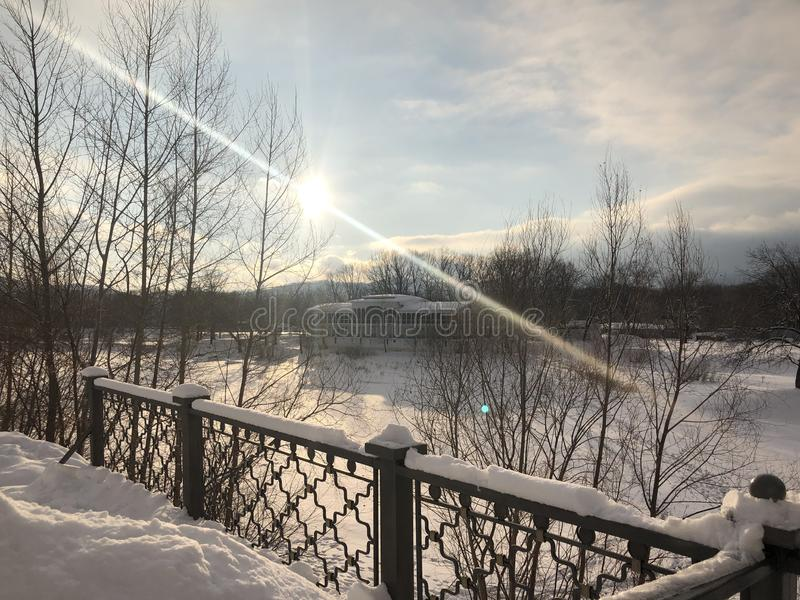 Russisch de winterbos royalty-vrije stock foto's