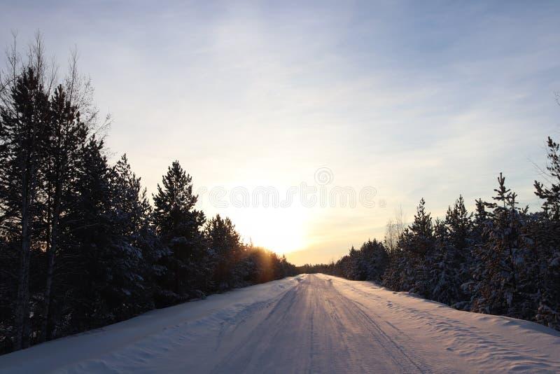 Russisch de Winterhout royalty-vrije stock fotografie