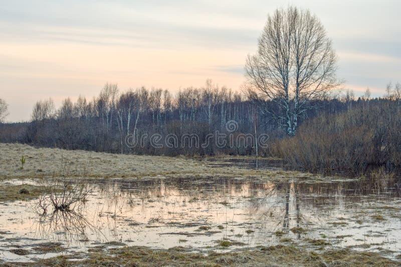 Russisch landschap royalty-vrije stock foto's