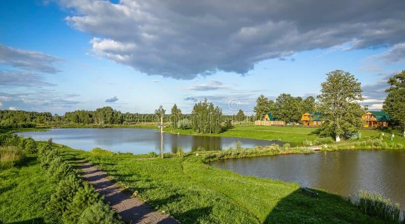 Russisch landschap bij de vijver in de zomer stock foto