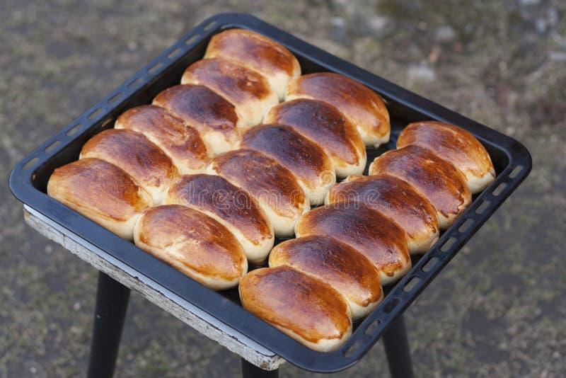Russische de fotopastei van pirozhki eigengemaakte gebakken pasteien royalty-vrije stock foto