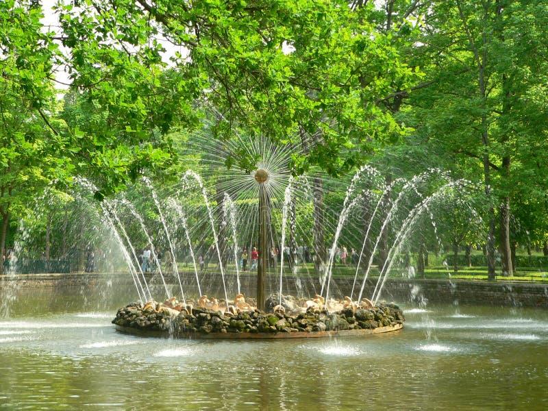 Russische fontein (zon) stock foto
