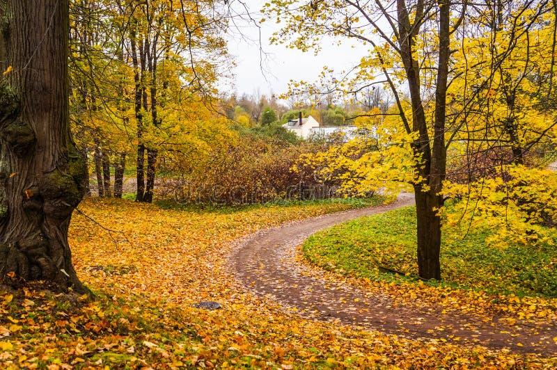 Russische Herbstlandschaft Wege im Oranienbaum-Park St Petersburg Herbst 2016 stockbild