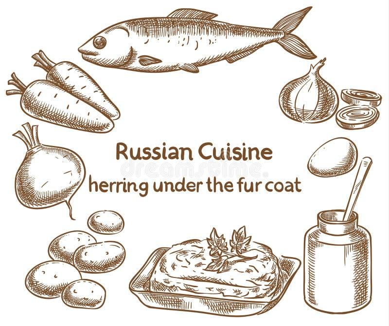Russische keuken Haringen onder een bontjas, ingrediënten, vectors vector illustratie
