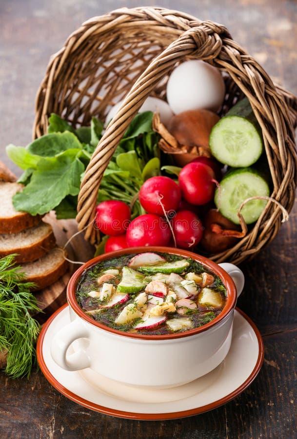Russische Kwaß Kälte-Suppe stockfotografie