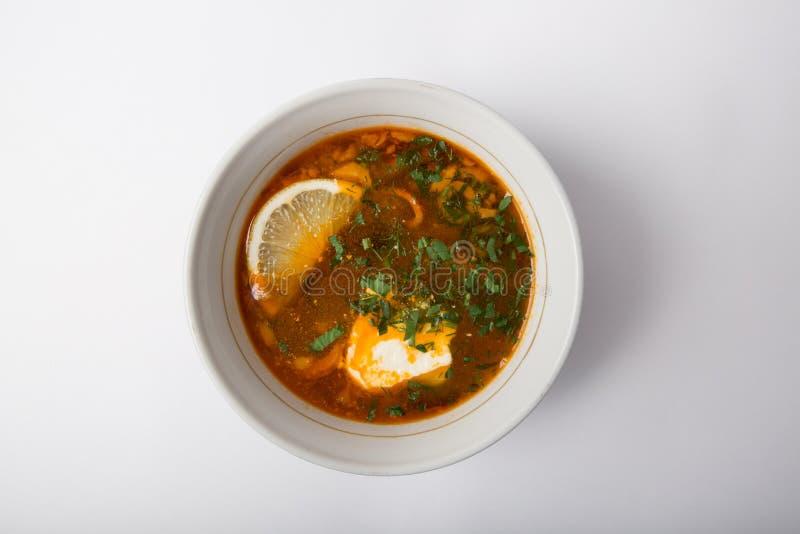 Russische solyanka soep stock fotografie