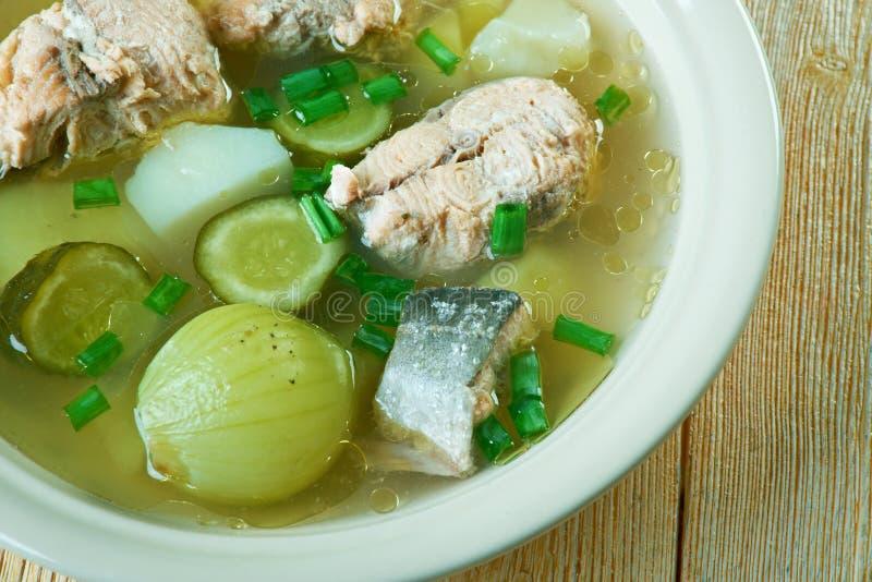 Russische vissensolyanka soep stock afbeelding