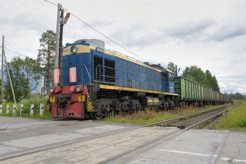 Russischer Güterzug in der Bewegung lizenzfreie stockfotografie