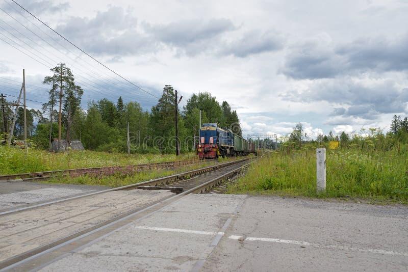 Russischer Güterzug in der Bewegung stockfotografie
