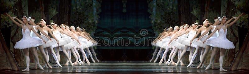 Russischer königlicher Ballett perfome Swan See stockbild
