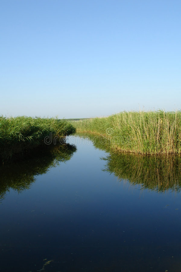 Russischer Teich stockbilder