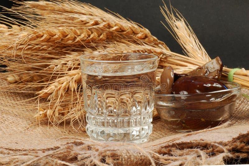 Russisches Wodka naturmort lizenzfreie stockfotos