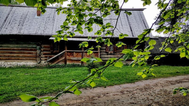 Russkaya izby lato po deszczu obraz stock