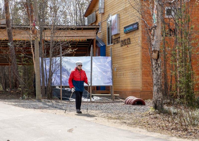 Russland Monchegorsk - Mai 2019 Nordisches Gehen Frau, die im Wald oder im Park wandert Aktiver und gesunder Lebensstil lizenzfreie stockfotografie