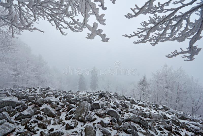 Russland, UralJanuary, Temperatur -33C Stein der Seelandschaft mit Schnee und dunkelgrauem nebeligem Himmel und Niederlassungen m lizenzfreies stockfoto