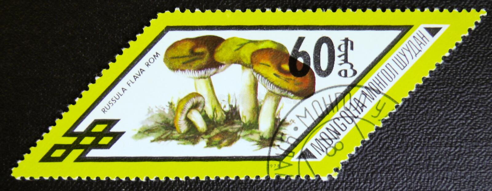 Russula Flama rom mushrooms, series, circa 1978. MOSCOW, RUSSIA - JANUARY 7, 2017: A stamp printed in Mongolia shows Russula Flama rom mushrooms, series, circa stock photo
