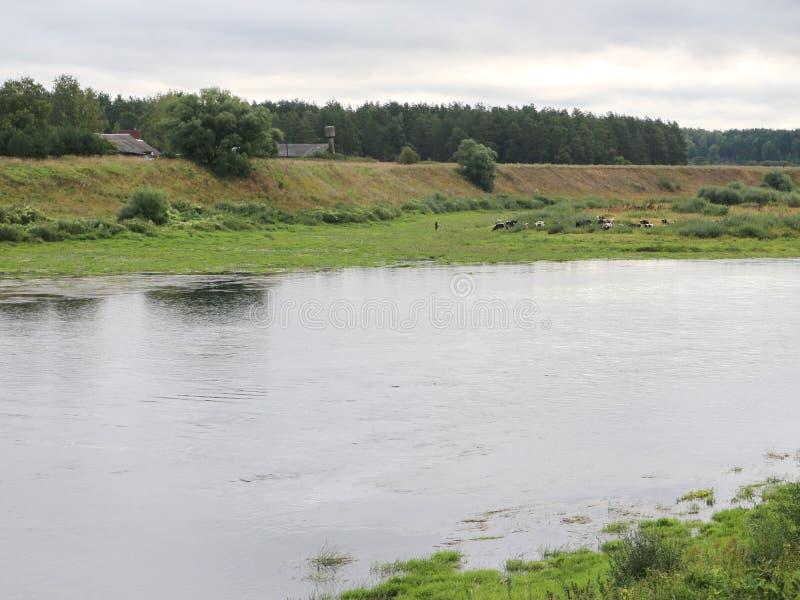 Rust op de rivierbank royalty-vrije stock afbeeldingen